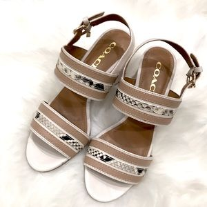 Coach Princeton Snake print leather sandals